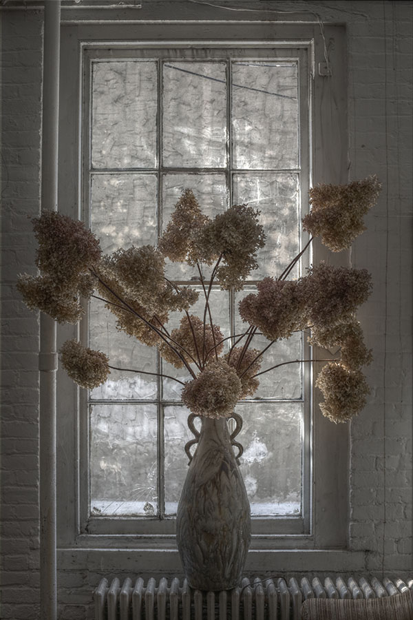 HDR False Color Image of a Large Vase with Dried Flowers in a Window