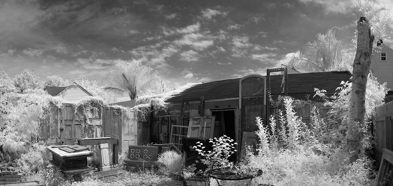 Infrared Panorama of Ecletic Back Yard.