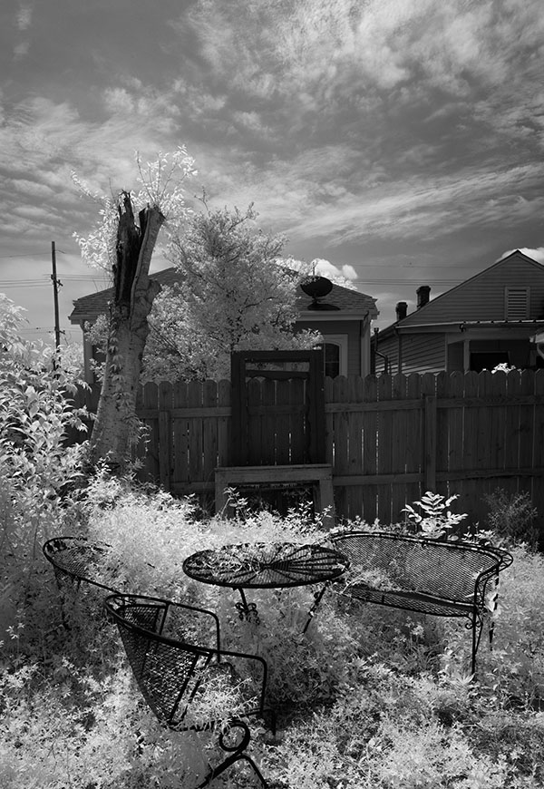 Vertical Infrared Panorama of Eclectic Back Yard.