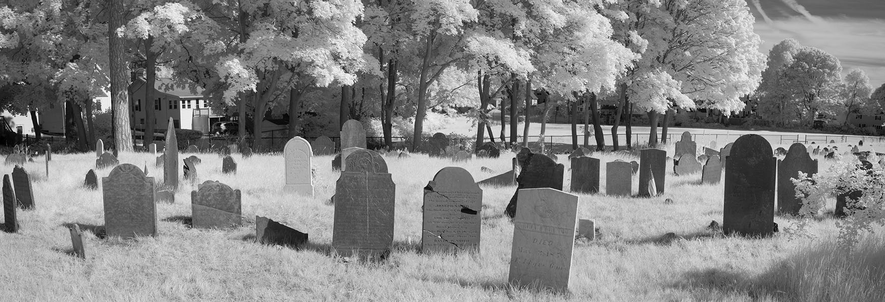 Infrared Photographic Panorama of Old Cemetery.