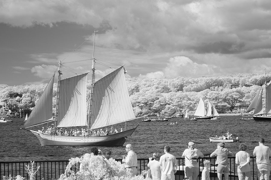 Infrared Photo of Spectators and Participants of the Gloucester Schooner Parade.